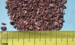 Pelargonium 3mm sifted (1) (Copy)